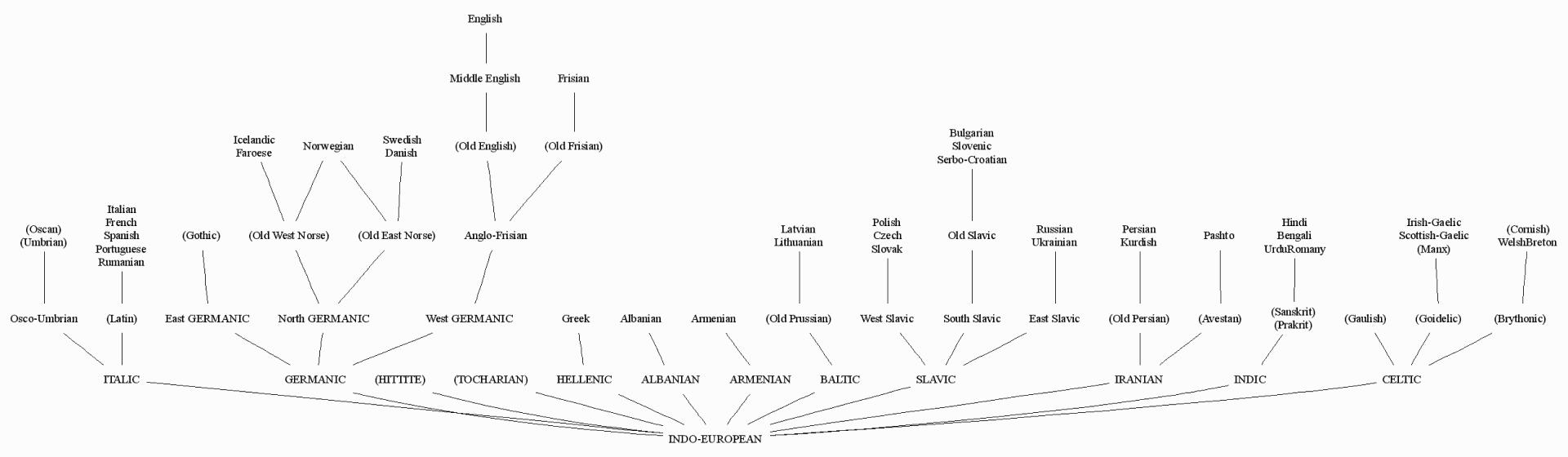 family tree hellog 英語史ブログ